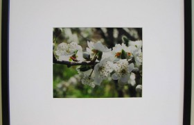 Black Slope 20x16 Photo Frame