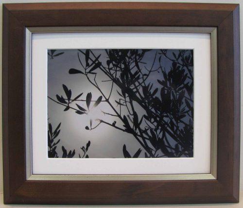 Mocha 10x8 Photo Frame