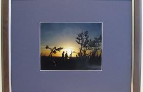 Mocha 20x16 Photo Frame